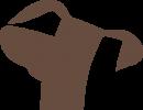 Logo BracconeroVending